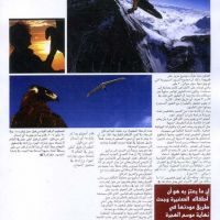 luoll-2004-pag3 041